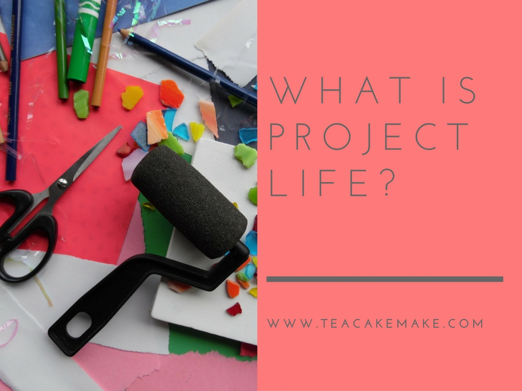 what is project life