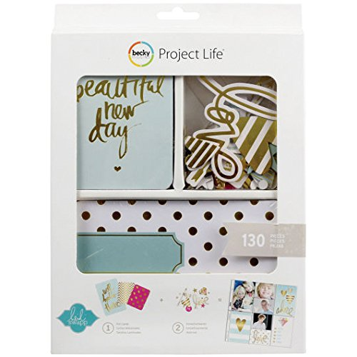 heidi swapp gold project life kit