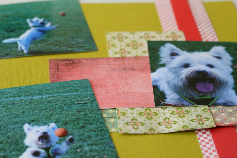 westie dog scrapbook layout progress