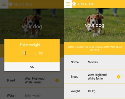 Enter your dogs weight