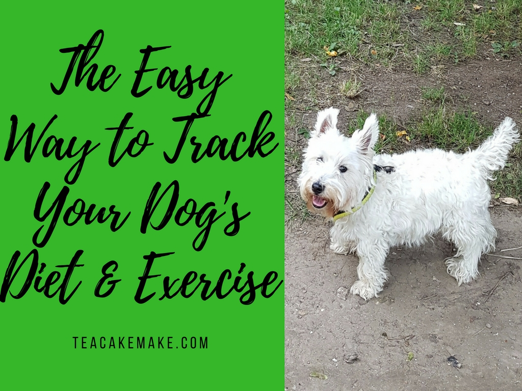 Pedigree tracks dog exercise app review