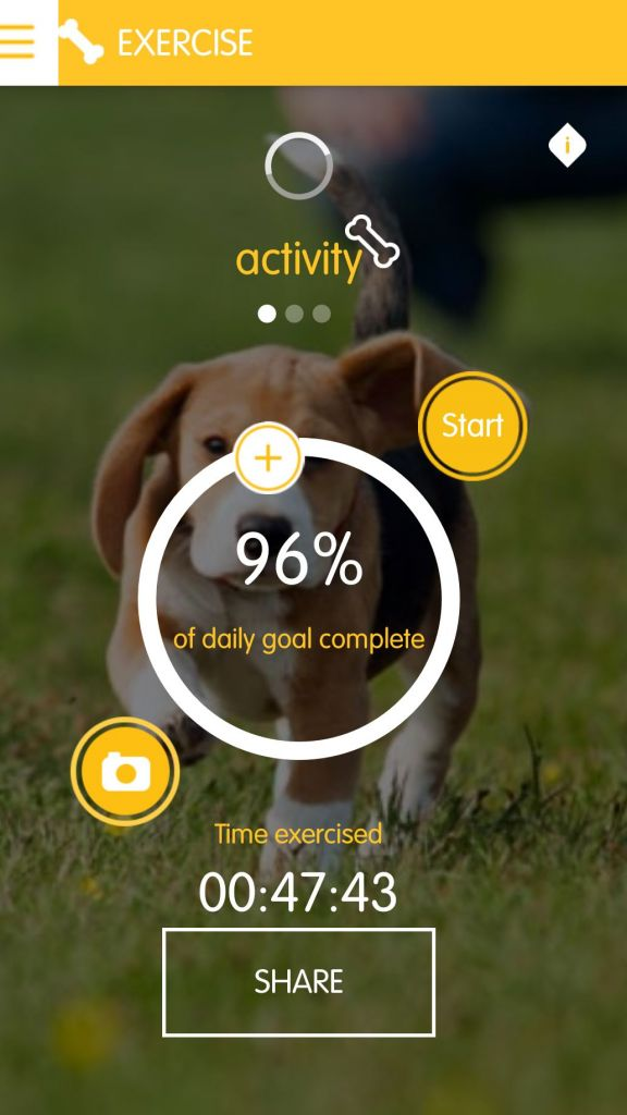 Tracking Your Dog's Fitness with Pedigree Tracks App 2
