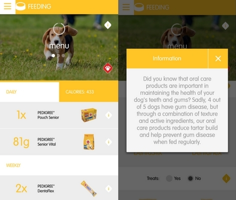 dogs diet tracking app