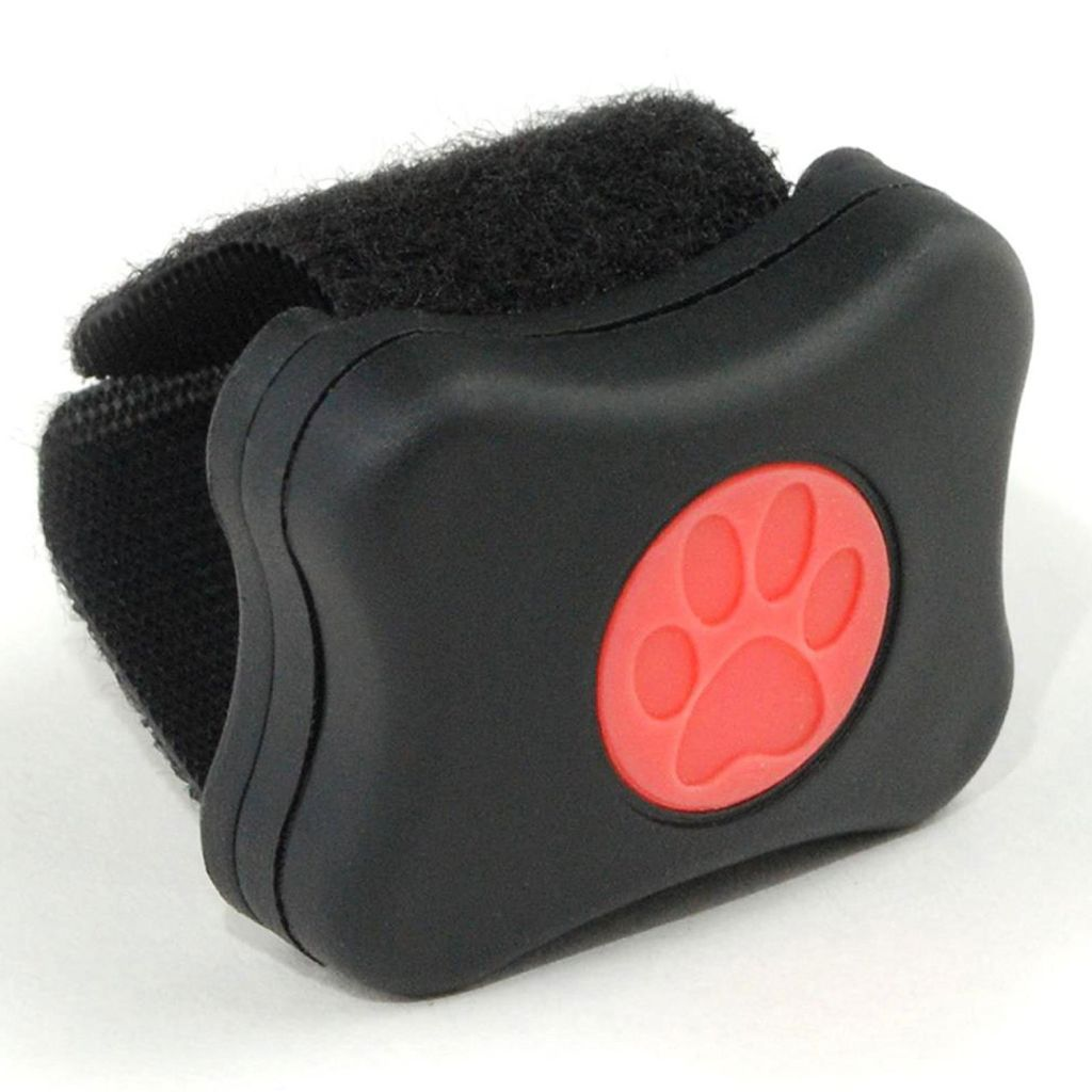 pit pat dog activity monitor